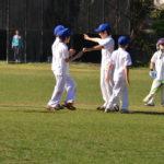 St Ives Junior Cricket