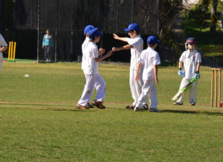 St Ives Junior Cricket